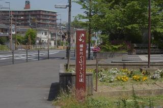 IMG_5469-bcb8e.JPG