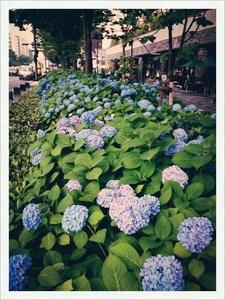 image/2014-06-13T16:51:43-1.jpg